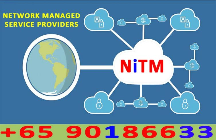 NETWORK MANAGED SERVICE PROVIDERS